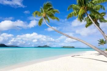 Palmen am Sandstrand auf Bora Bora
